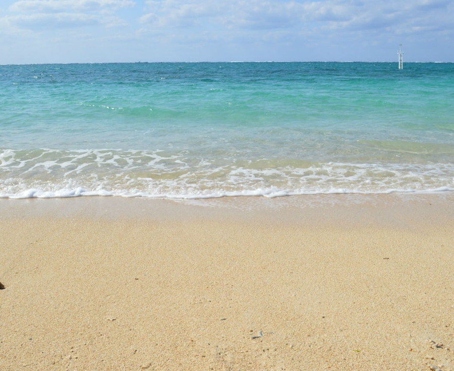緩やかな波の海