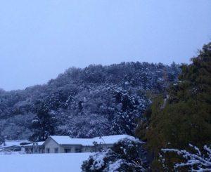 雪国の景色